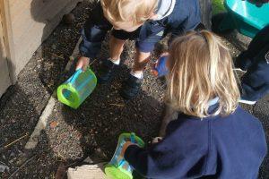 Nursery Autumn Term 8