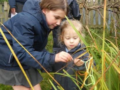 EYFS Forest School Activities Workshop