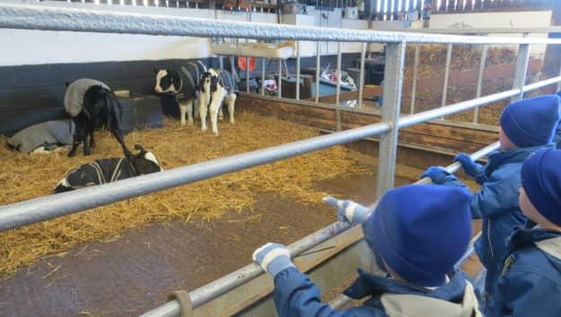 Reception Stockley Farm Christmas Trip