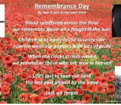 Remembrance Day Poem 2019