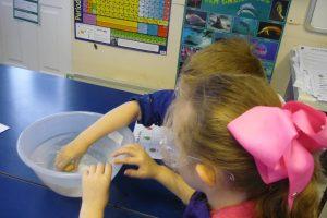 Science Newsletter 6