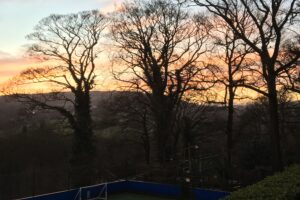 Y6 BRABYNS SUNRISE