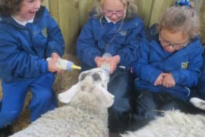 Y12 Smithills Farm 1 2