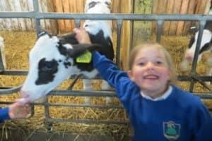 Y12 Smithills Farm 1 7 800X600