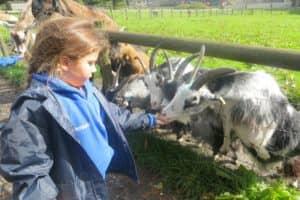 Y12 Smithills Farm 1 9 800X600