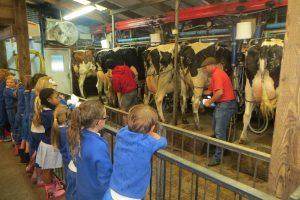 Y12 Smithills farm 1 5