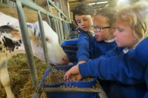 Y12 Smithills farm 1 6