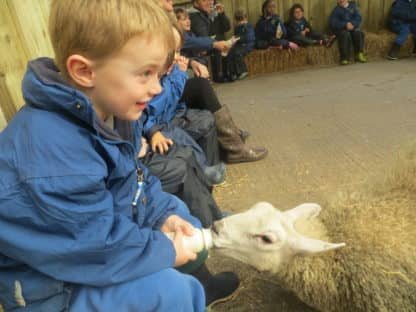 Year 1 & 2 Visit Smithills Farm