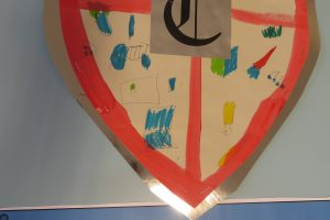 Y2 Shields 5