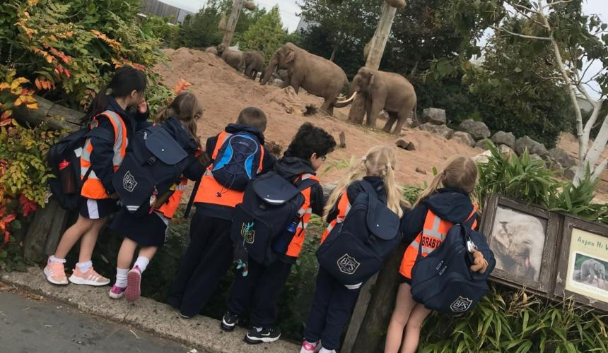 A trip to Chester Zoo!
