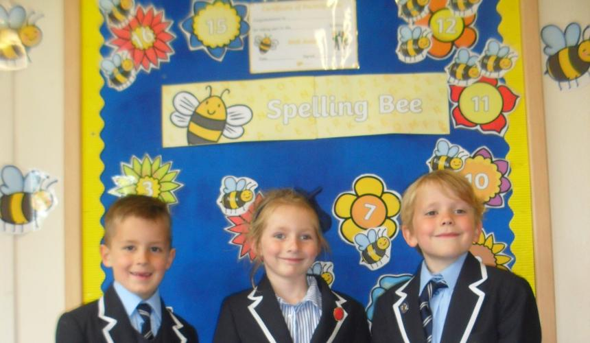 Brabyns Annual Spelling Bee Competition
