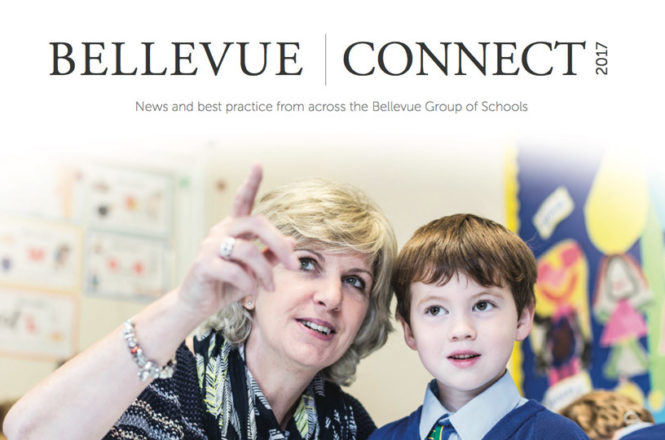 Insight into the Bellevue Group