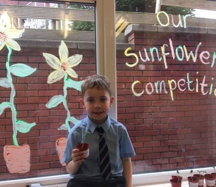 Brabyns Pupils Embrace Their 'Green Fingers'