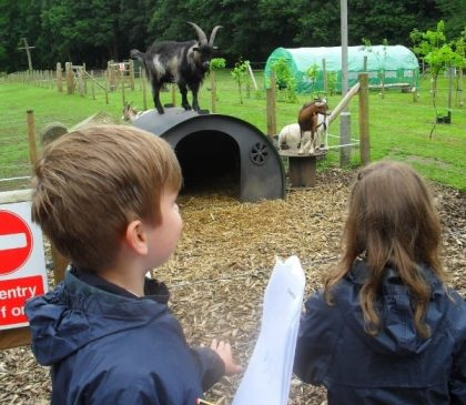 Years 3 & 4 Visit The Garden House
